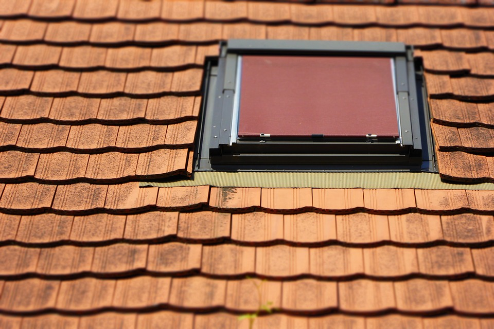 Monopitch roof lights